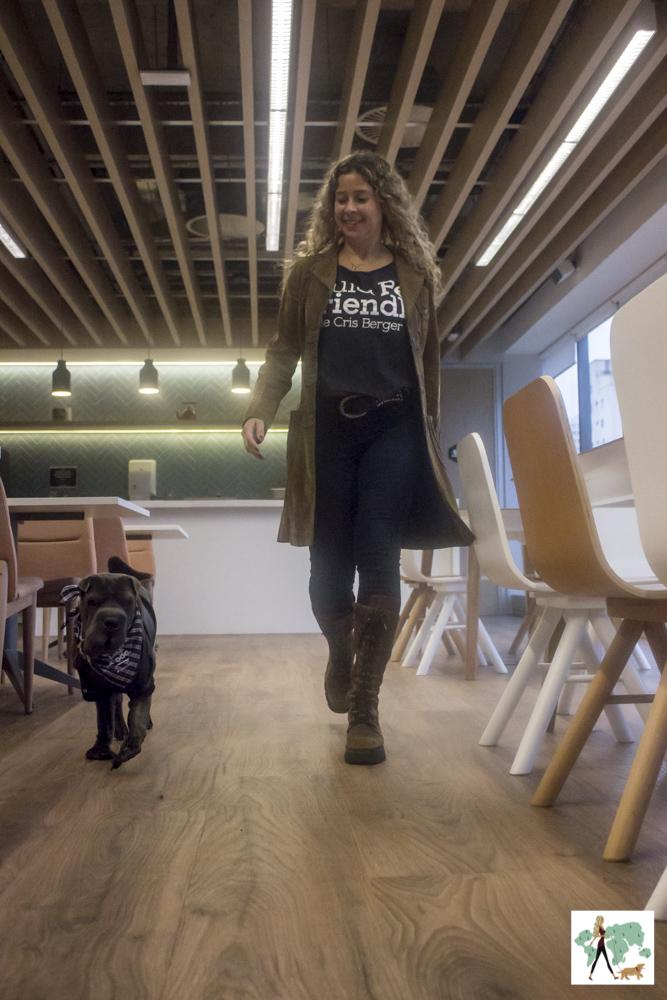 mulher e cachorro caminhando no Spaces