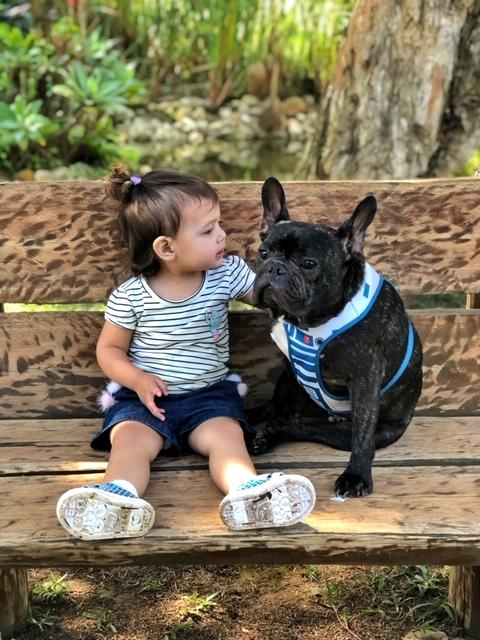 criança e cachorro sentados