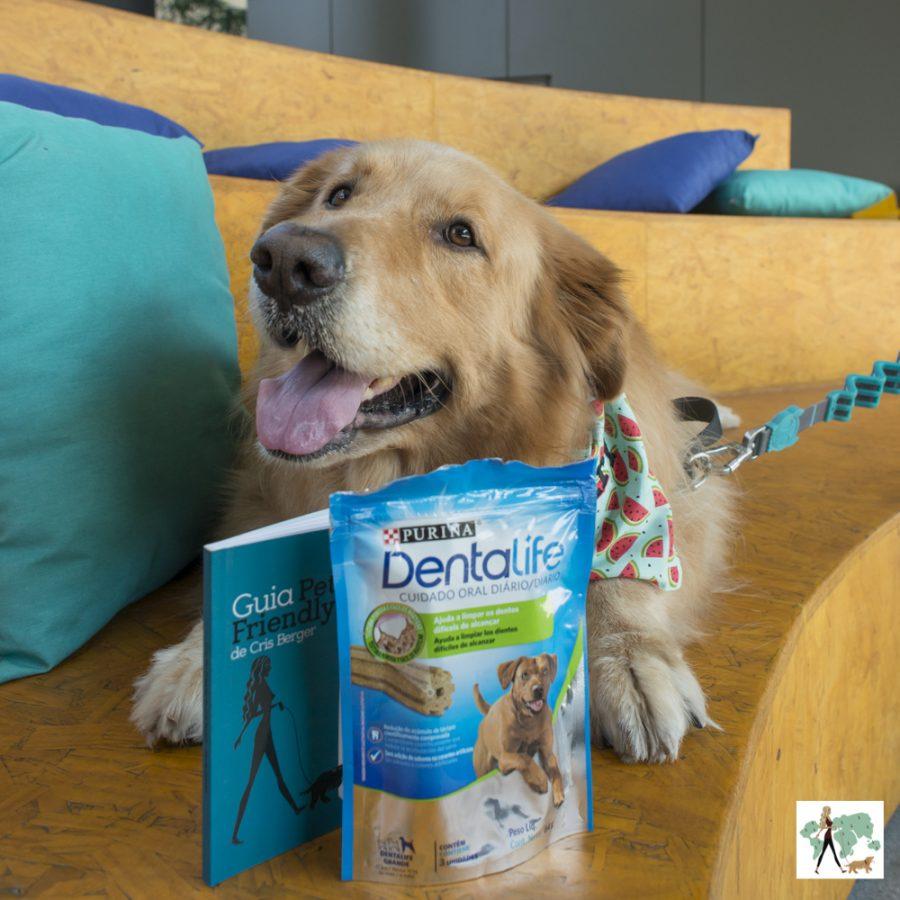 cachorro golden ao lado de embalagem de Dentalife da Nestlé Purina