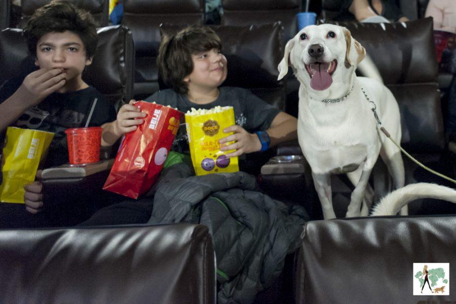 crianças e cachorro na sala de cinema