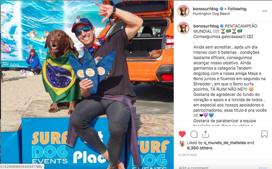 captura de tela do instagram do bono surf dog