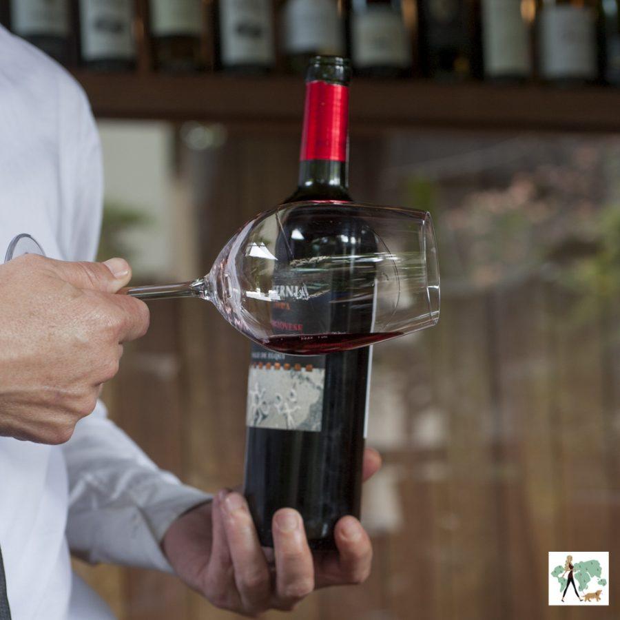 homem segurando garrafa de vinho e mexendo no cálice