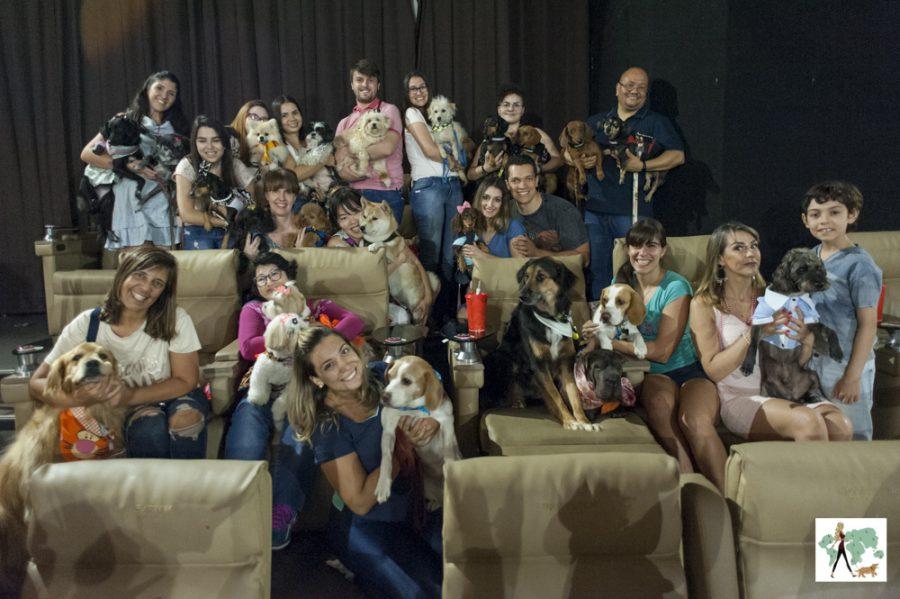 pessoas e cachorros em sessão de cinema pet friendly