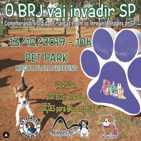 convite do dia das crianças do grupo Terriveis beagles de Sp