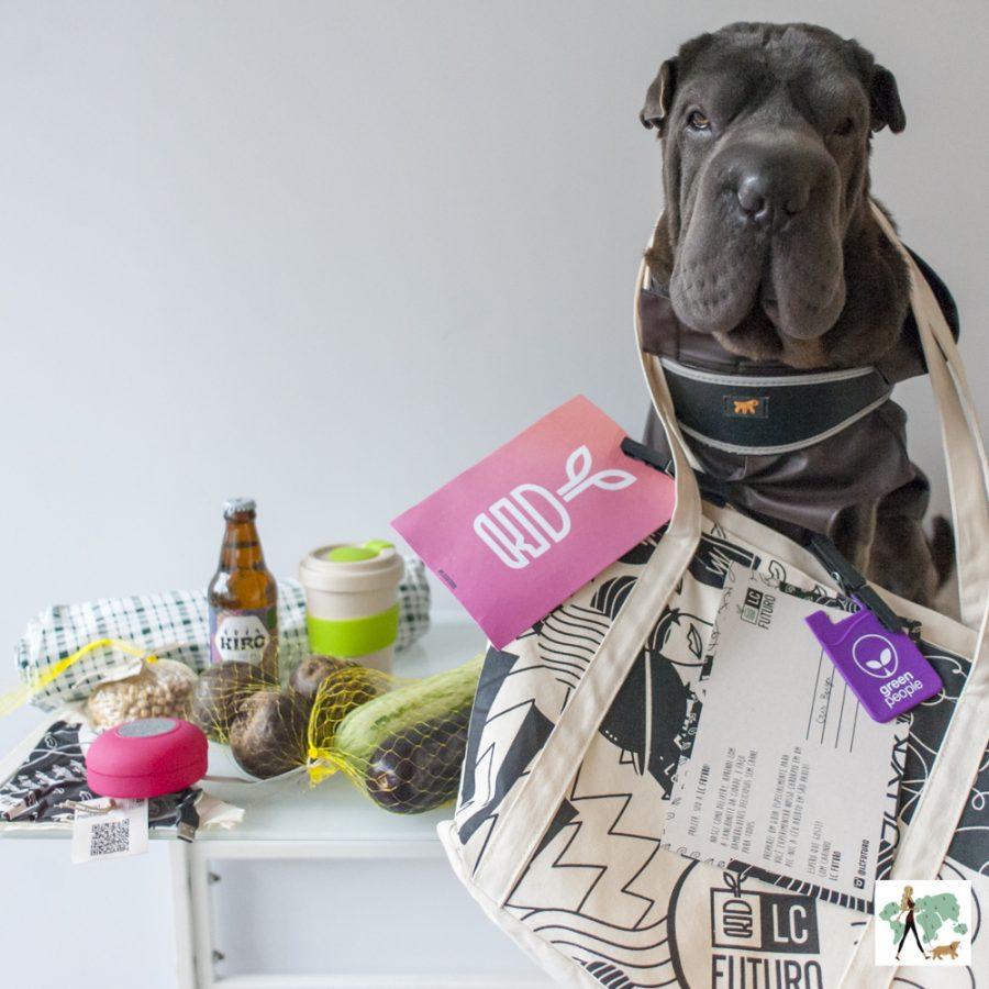 cachorro com kit da LC Futuro