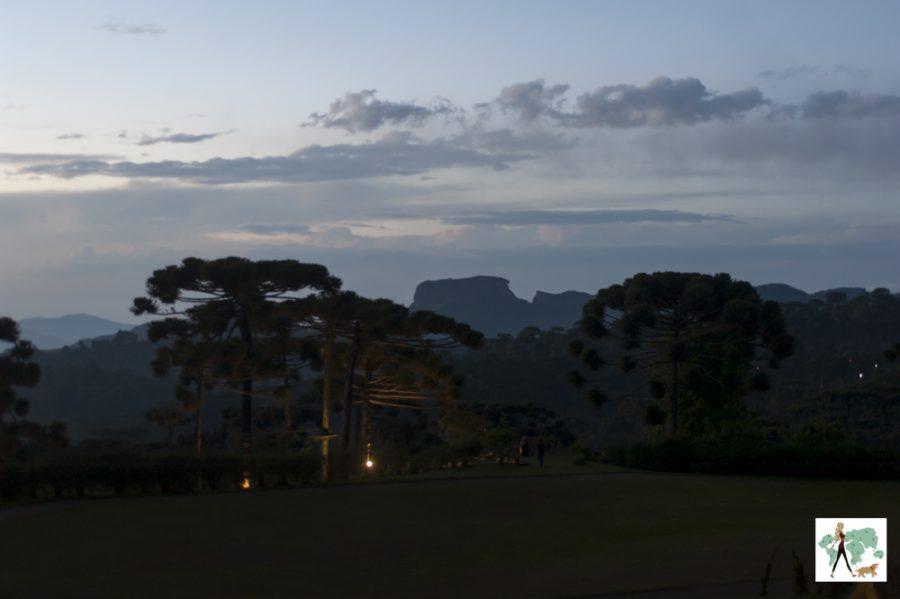 vista das montanhas e araucárias