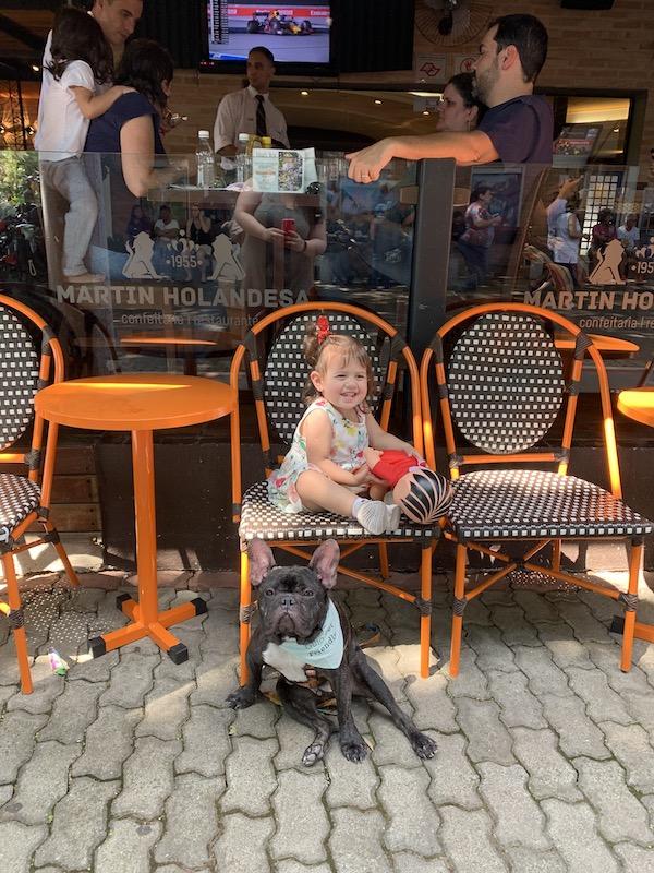 criança sentada em cima de cadeira e cachorro