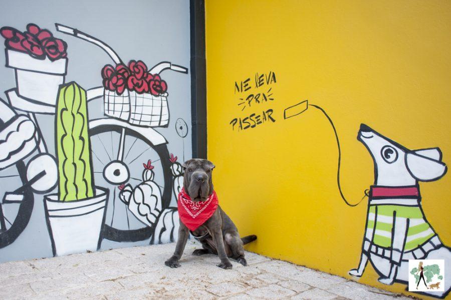 cachorro sentado na frente de parede grafitada